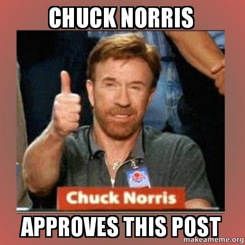 chuck norris approves meme - photo #1