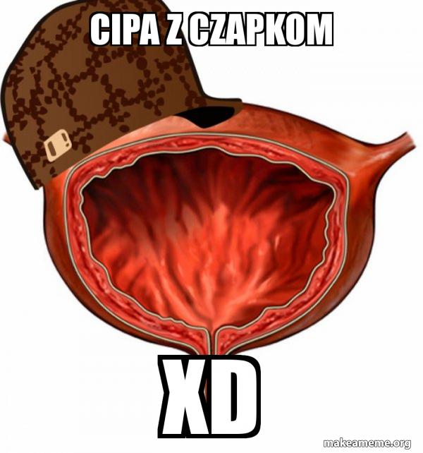 Scumbag Bladder meme
