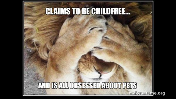 CLAIMS TO BE CHILDFREE    AND IS ALL OBSESSED ABOUT PETS