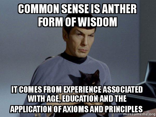 common sense is tddmsq common sense is anther form of wisdom it comes from experience