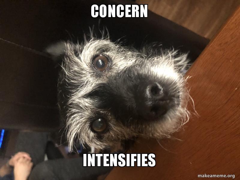 concern intensifies concern intensifies make a meme