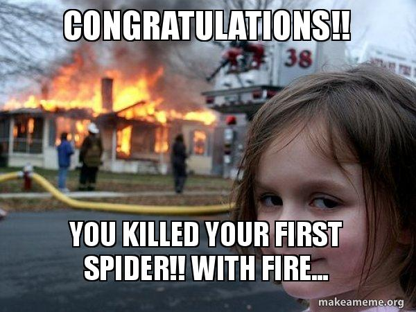 Congratulations You Killed Your First Spider With Fire