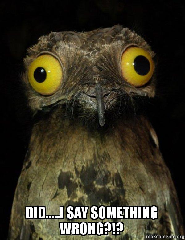 did.....I say something wrong?!? - Weird Stuff I do Potoo ...