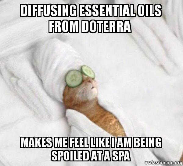 diffusing essential oils diffusing essential oils from doterra makes me feel like i am