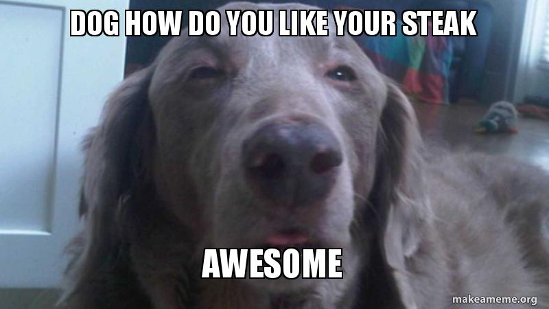 Awesome Dog Pictures