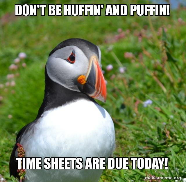 Don't Be Huffin' And Puffin! Time Sheets Are Due Today