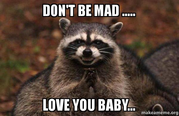 dont be mad xvtsyq don't be mad love you baby evil plotting raccoon make