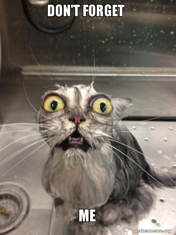 Dont Forget Me Cat Bath Make A Meme