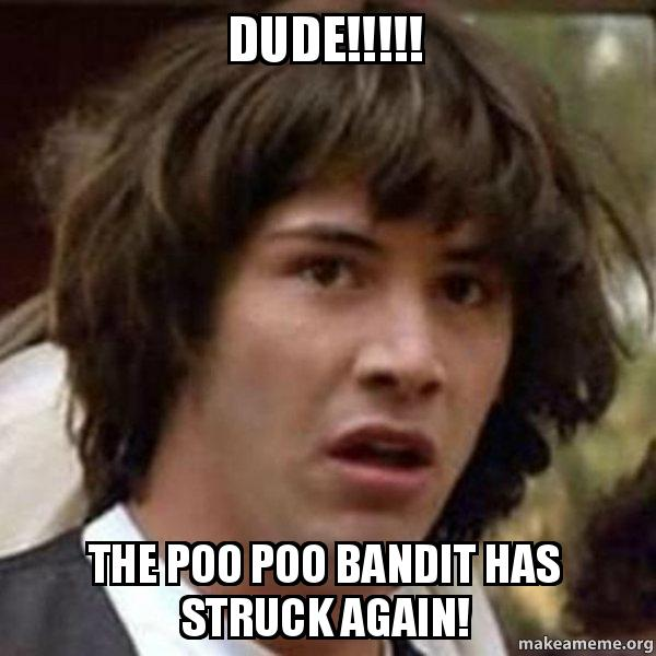 Dude The Poo Poo Bandit Has Struck Again Conspiracy Keanu