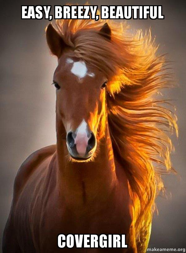 easy breezy beautiful 3ahjeq easy, breezy, beautiful covergirl ridiculously photogenic horse