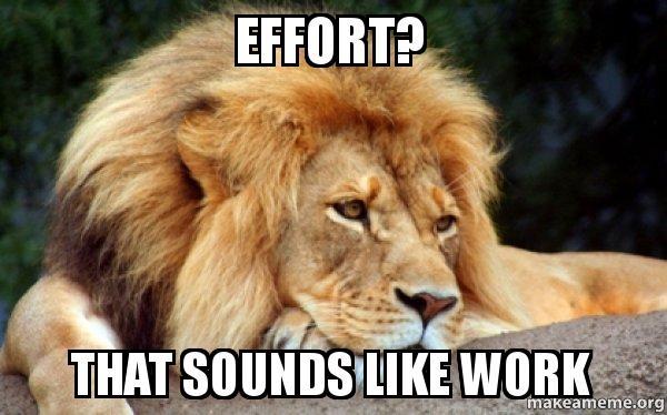 Effort? That sounds like work - Confession Lion | Make a Meme, new friends
