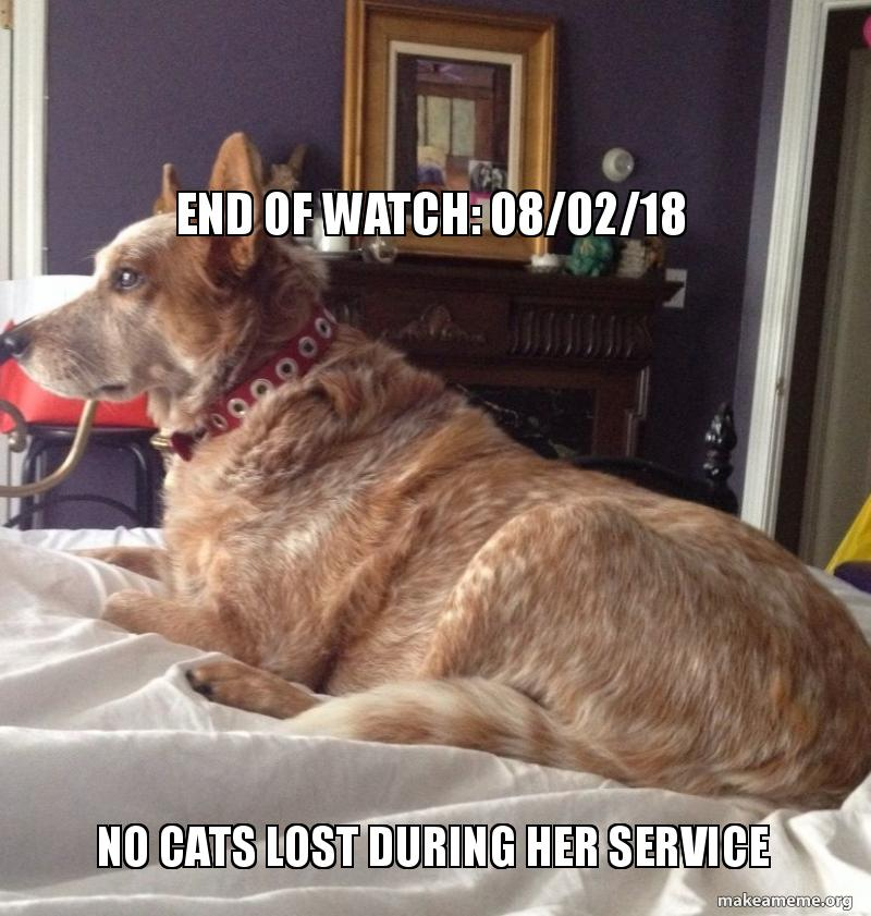 END OF WATCH: 08/02/18 No Cats Lost During Her Service