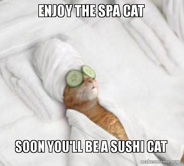 Enjoy The Spa Cat Soon Youll Be A Sushi Cat Enjoy It While It