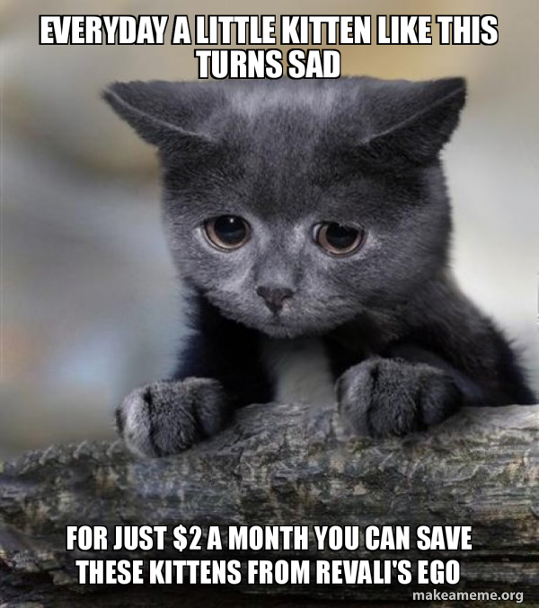 Confession Cat meme