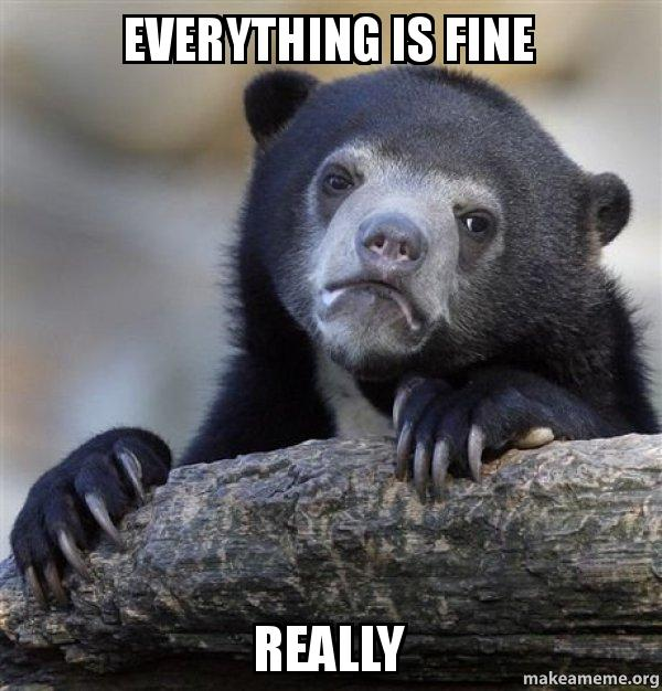 Everything is fine Really - Confession Bear   Make a Meme