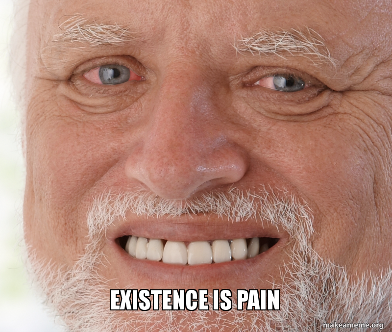 existence is pain existence is pain make a meme