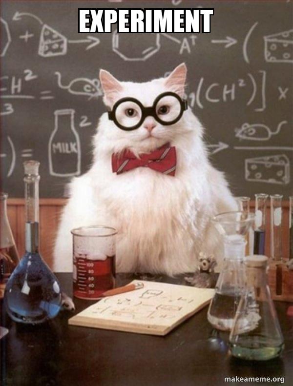 experiment - Chemistry Cat | Make a Meme