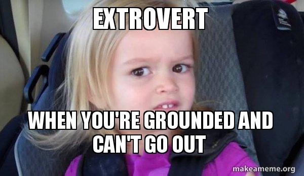 Image result for extrovert memes