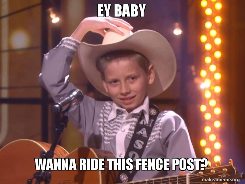 Ey Baby Wanna ride this fence post? | Make a Meme