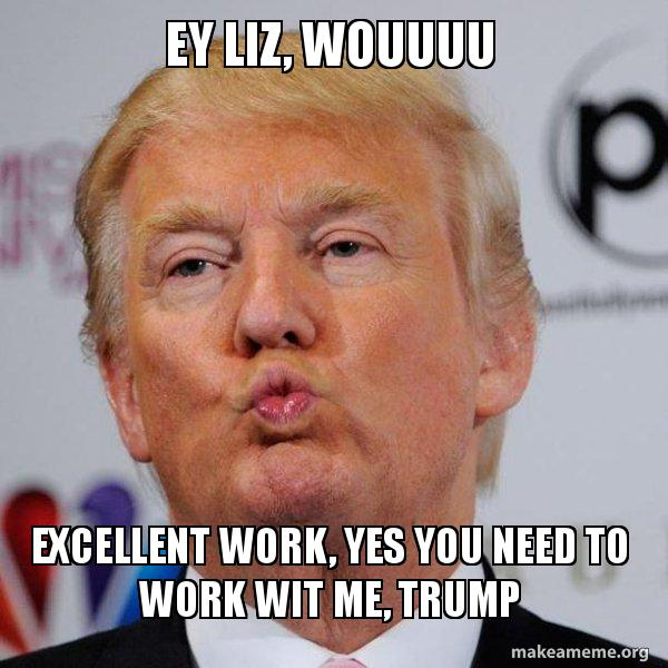 EY LIZ, WOUUUU EXCELLENT WORK, YES YOU NEED TO WORK WIT ME, TRUMP