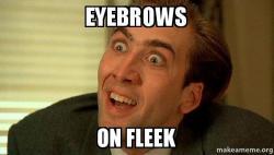 eyebrows on fleek eyebrows on fleek sarcastic nicholas cage make a meme,Fleek Meme