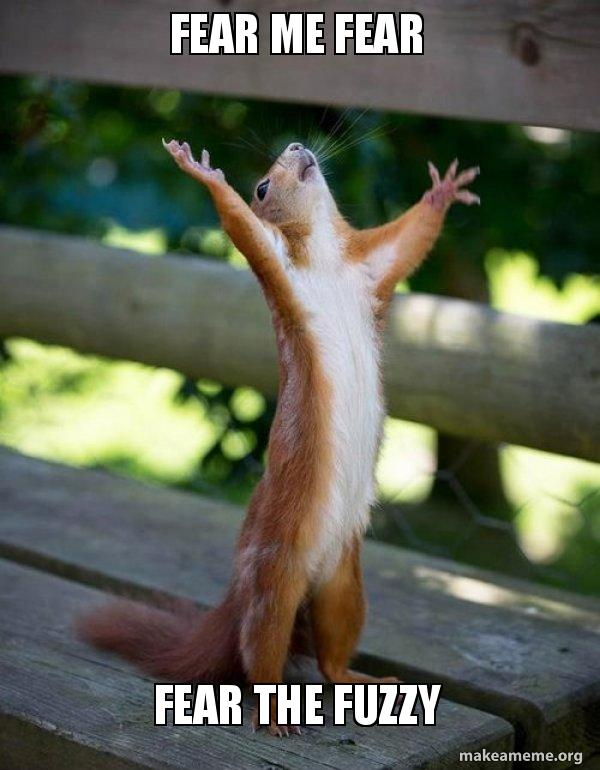 Fear Me Fear Fear The Fuzzy Happy Squirrel Make A Meme