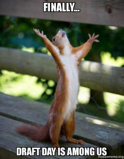 finally draft day finally draft day is among us happy draft day squirrel make a