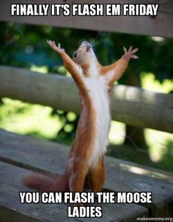 finally its flash finally it's flash em friday you can flash the moose ladies