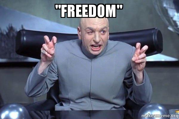 Image result for freedom meme