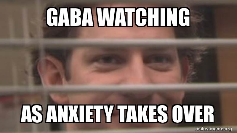 Gaba watching as anxiety takes over | Make a Meme