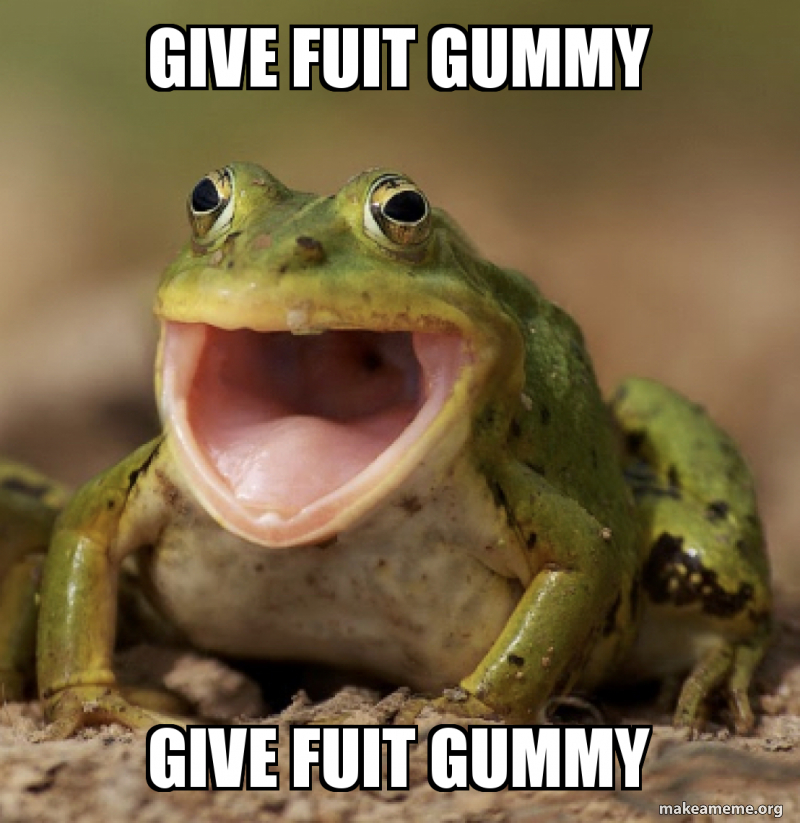 Give Fuit Gummy Give Fuit Gummy Make A Meme 1 count the world's largest frog made with gummy! give fuit gummy give fuit gummy make
