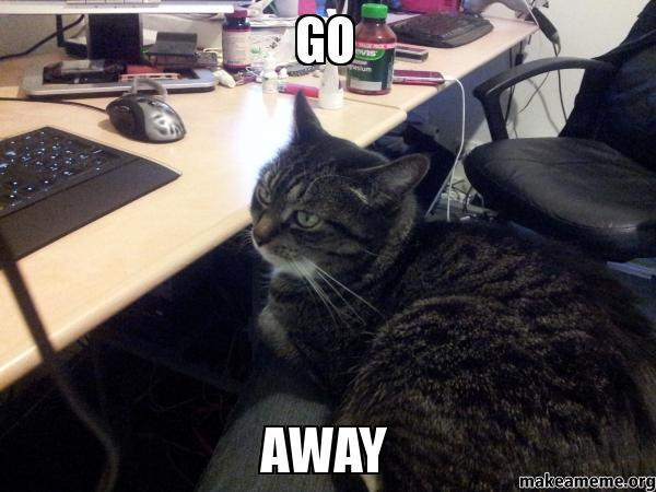 go away - Cat at desk | Make a Meme Go Away Meme