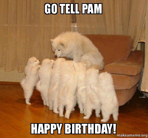 go tell pam go tell pam happy birthday! storytelling dog make a meme