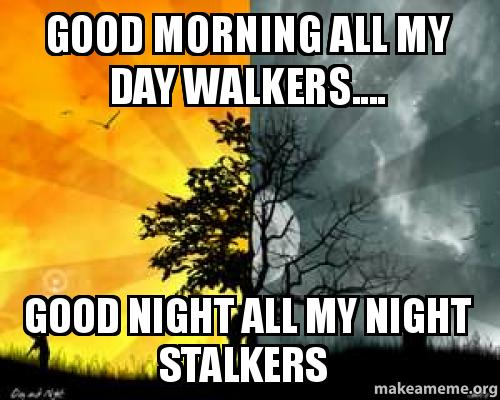 Good Morning All Meme : Good morning all my day walkers night