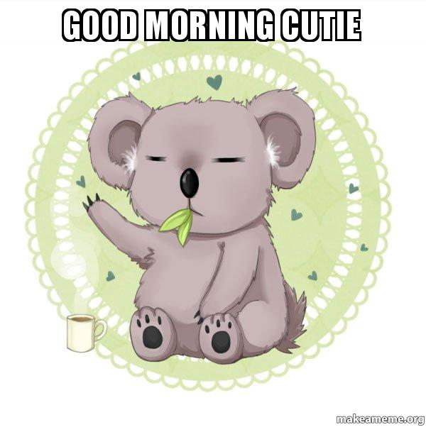 Good Morning Cutie Text : Good morning cutie aussie koala doing the night shift