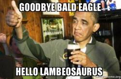 goodbye bald eagle goodbye bald eagle hello lambeosaurus upvote obama make a meme