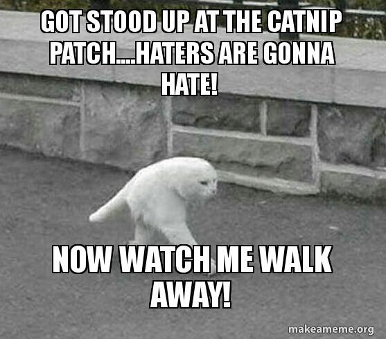 Got stood up today
