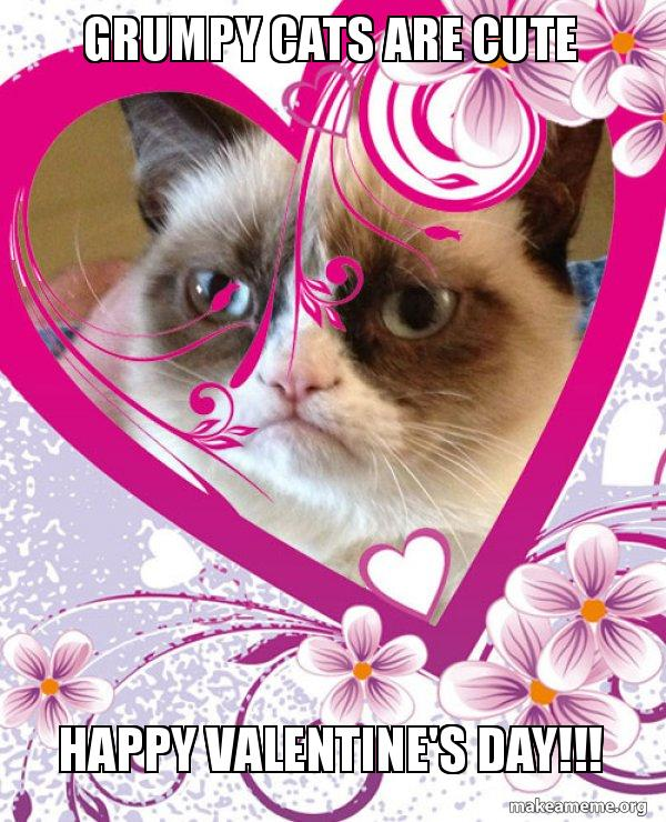 Grumpy Cats Are Cute Happy Valentine S Day Grumpy Cat