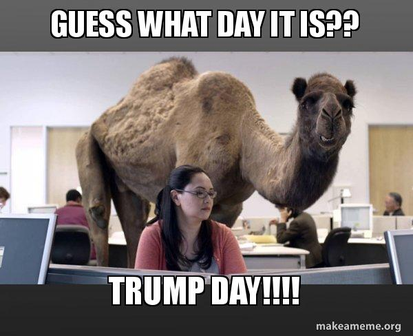 guess what day 92cl1w guess what day it is?? trump day!!!! hump day camel make a meme