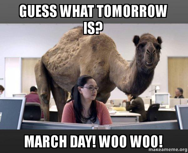 Hump Day Camel Woo Woo Hump Day Camel Meme
