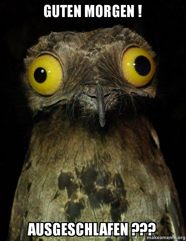 guten morgen ausgeschlafen weird stuff i do potoo make a meme. Black Bedroom Furniture Sets. Home Design Ideas