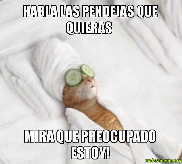 pampered cat meme habla las pendejas que quieras mira que preocupado ...
