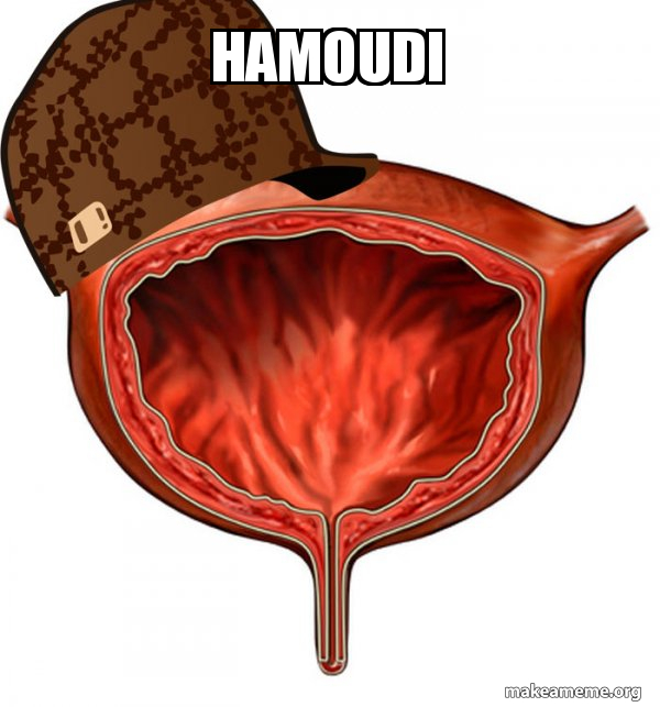 Scumbag Bladder meme