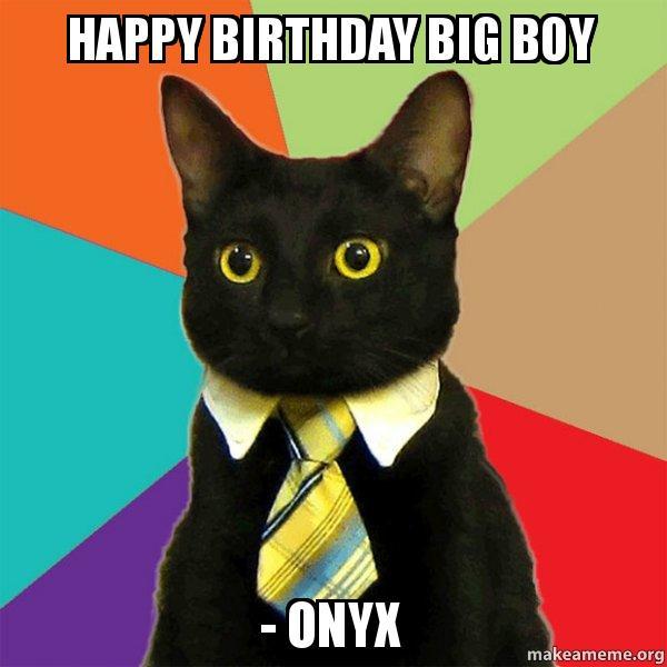 Happy Birthday Big Boy - Onyx - Business Cat