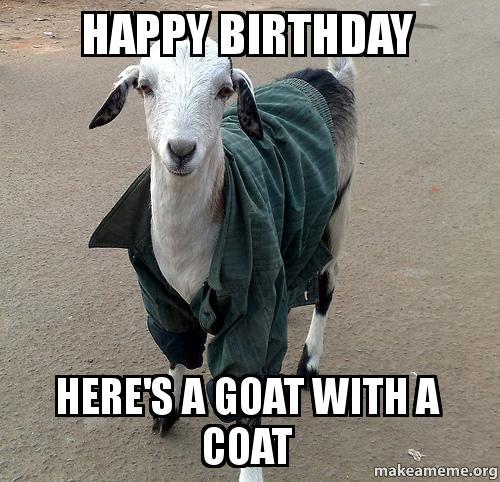 Happy birthday goat - photo#16