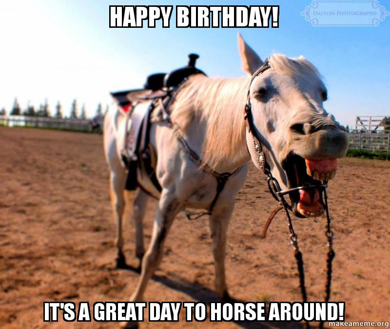 Happy Birthday! It's A Great Day To Horse Around!