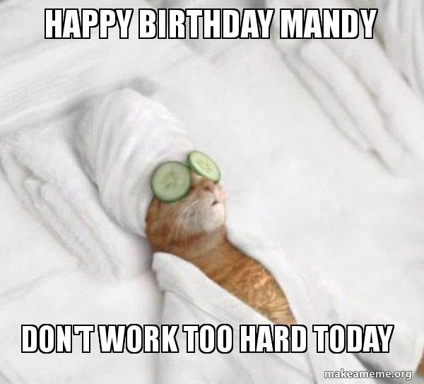 happy birthday mandy zed7s3 happy birthday mandy don't work too hard today pampered cat meme