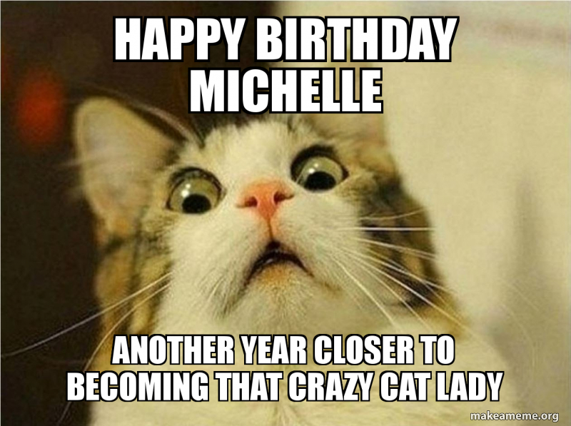 Happy Birthday Michelle Another Year Closer To Becoming That Crazy Cat Lady Cat Lady Make A Meme