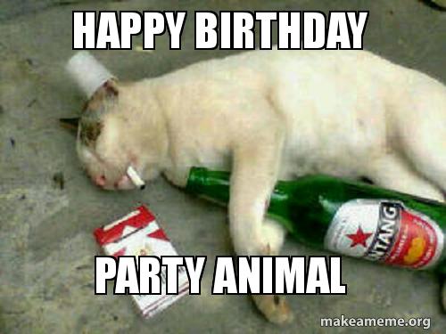 happy birthday party 5aaab4 happy birthday party animal make a meme
