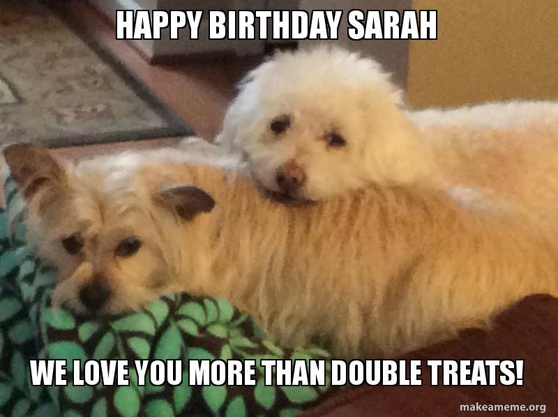 Happy Birthday Sarah We Love You More Than Double Treats Make A Meme